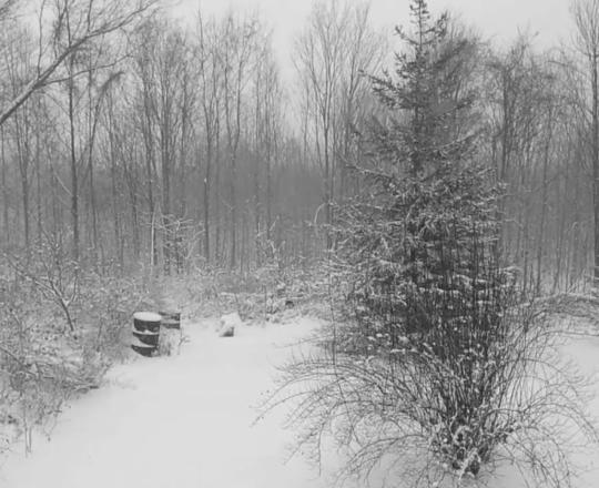 Winter in Otisco